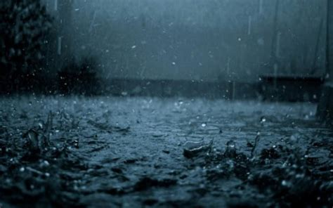 live rain themes download rain live wallpapers for android by semenov