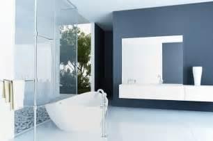 Blue accent bathroom minneapolis painting company