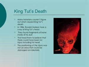 King Tut Essay by King Tut