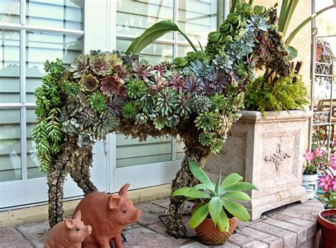 florida container gardening 246 best images about florida container gardening and