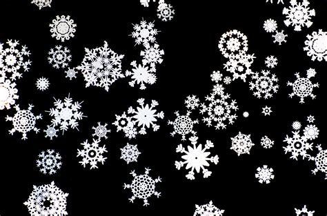 pictures to on snowflakes free stock photo domain pictures