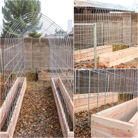 build a garden trellis how to make a trellis and raised garden box combo