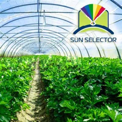 Sun Mars Clear 50 Warranty 5 Years greenhouse plastic 6 mil 50 x 110