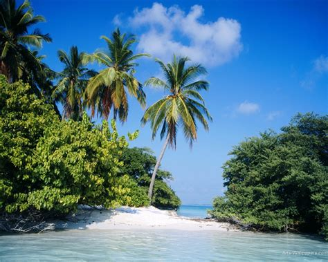 tropical island paradise wallpaper wallpapersafari