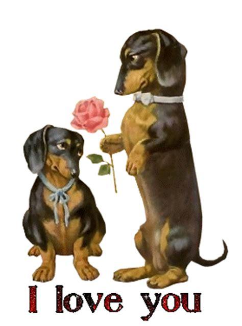 imagenes de animales romanticos gifs animados de perros y amor gifmania