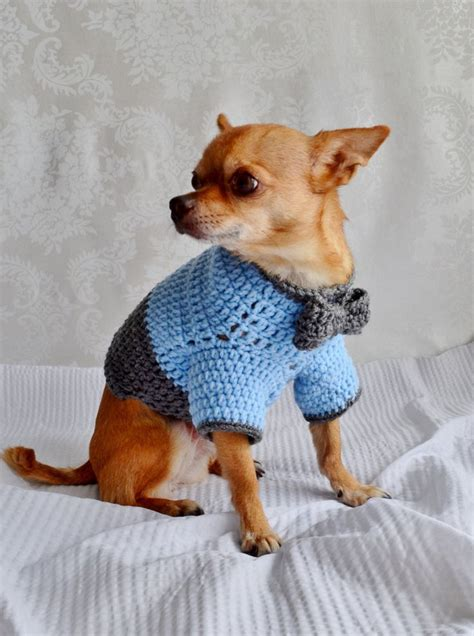 Hundepullover Chihuahua Häkeln die besten 25 hundepullover h 228 keln ideen auf