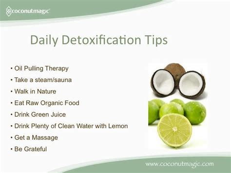 Best Daily Harvest Smmothie For Detox by 17 Best Images About Juicing On Juice Cleanse
