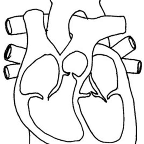 Heart Attack Coloring Page   pinterest the world s catalog of ideas heart attack