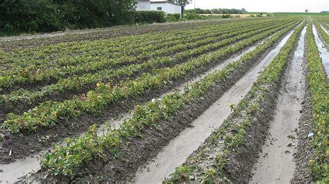 Garten Versicherung by Hortisecur 169 F Gartenbau Versicherung