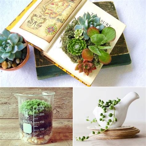 best desk plants best 25 desk plant ideas on pinterest