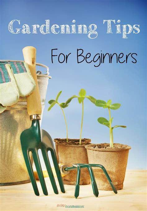 Gardening Ideas For Beginners Gardening Tips For Beginners