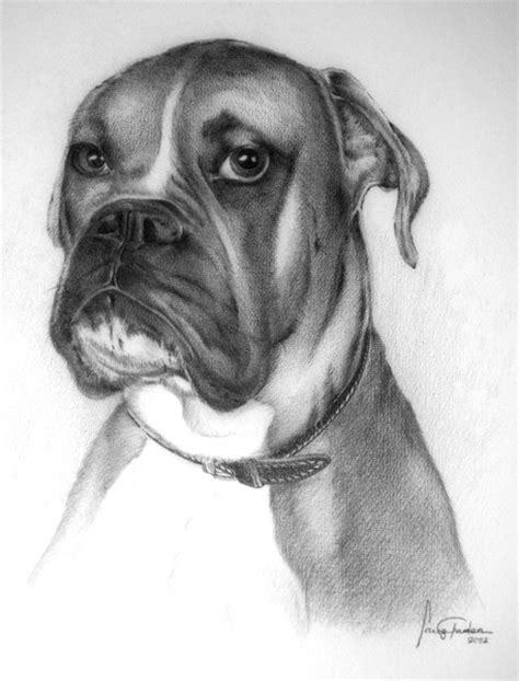 imagenes realistas de animales 10 lindos dibujos a lapiz de perros imagenes de perros