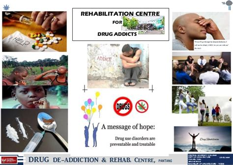 Naltural Detox To Use For Pill Addiction by Thesis Rehab And Detox
