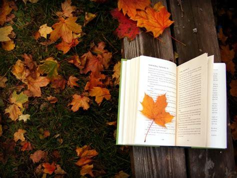 libro autumn seasons tegan on toast autumn awakening the in all of us