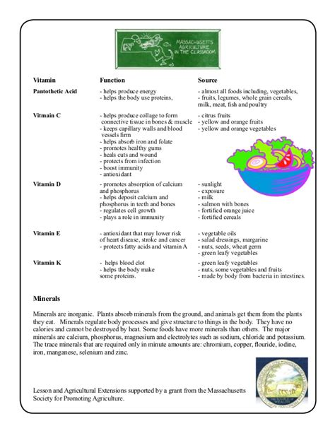 3 2 carbohydrates lipids and proteins worksheet carbohydrates proteins and fats worksheets