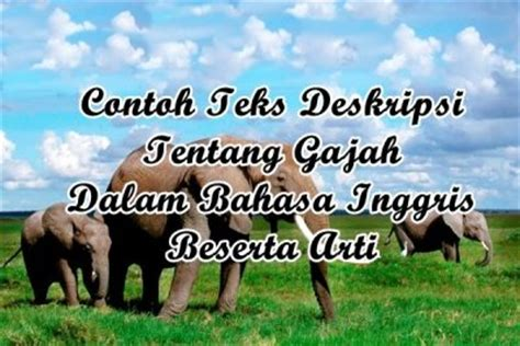 contoh descriptive text animal tentang hewan gajah dalam contoh analytical exposition text about environment