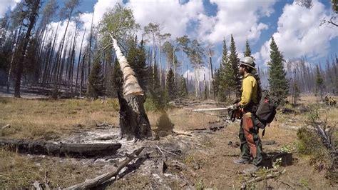 why didn t shelters save granite mountain hotshots wyoming hotshots 2016 season doovi
