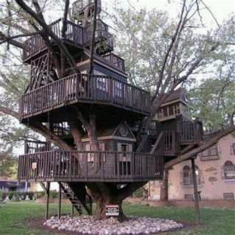 nice tree houses nice tree house crazy architecture pinterest