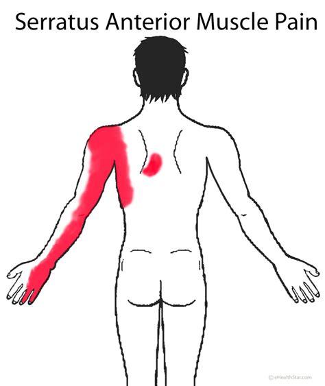 side pain left  upper  sharp severe