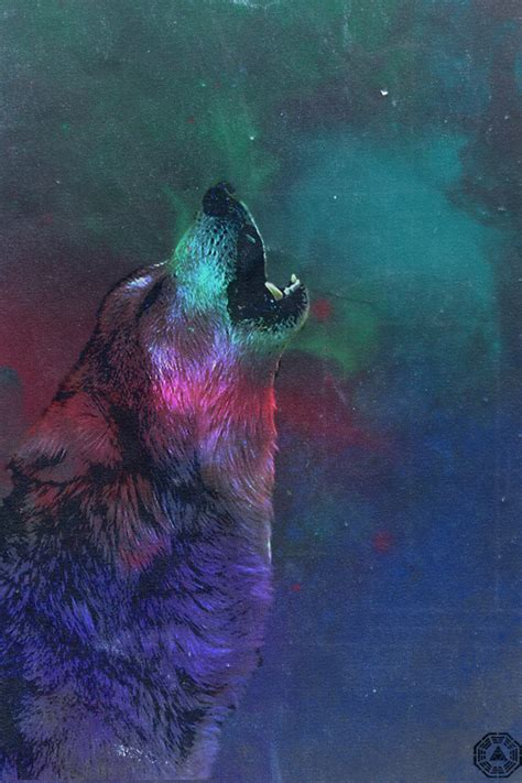 wallpaper iphone wolf wolf in space wallpaper wallpaper wide hd