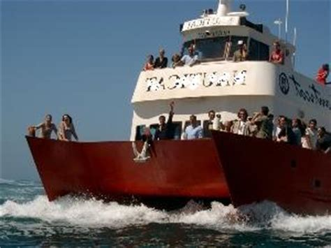 fishing boat hire cape town hout bay boat charters and functions