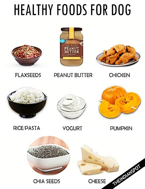 healthy food for puppies healthy foods for your