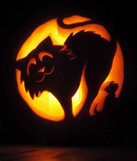 6 tips amp tools for pumpkin carving house of brokers