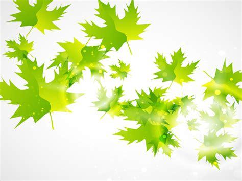 wallpaper vector daun green leaf vector background vector art graphics