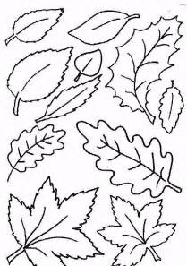 leaves coloring pages leaf coloring pages coloringpages1001