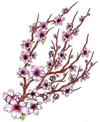 design flower branch cherry blossom branch drawing clipart best