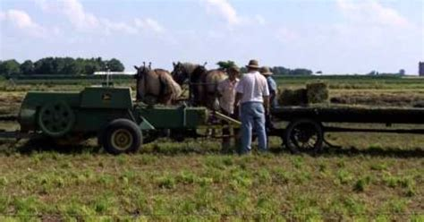 amish plowing with a seven hitch amish with 4 hitch baling hay