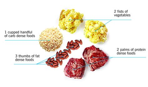 healthy fats for endomorph type find out whether it s right for you