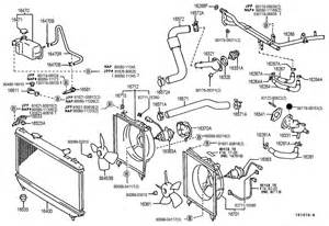 Toyota Camry 1999 Parts 1999 Toyota Camry Parts Diagram 1999 Free Engine Image