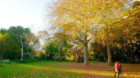 garden adelaide adelaide botanic gardens adelaide south australia