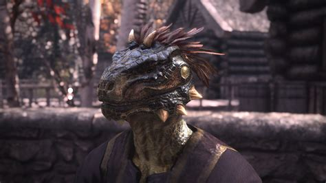 skyrim radioreggaes hair workshop for khajiit radioreggaes hair workshop for argonian radioreggaes hair