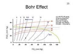 bohr effect diagram pulmonary part 2 3 flashcards quizlet