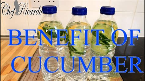 Gi Max Detox by The Benefit Of Cucumber Water The Best Health Benefits And