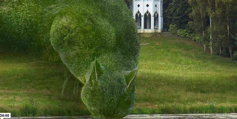 topiary cat social media topiary cat with cats