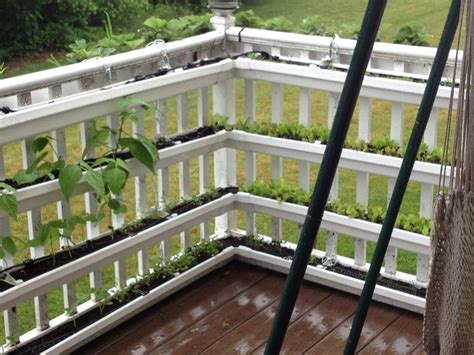 Gutter Planters On Fence by 32 Best Gutter Gardens Images On Gardening