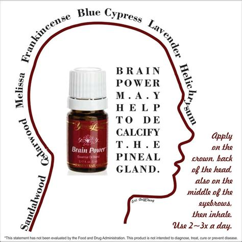 Essential Oils For Floride Detox by Best 25 Decalcify Pineal Gland Ideas On