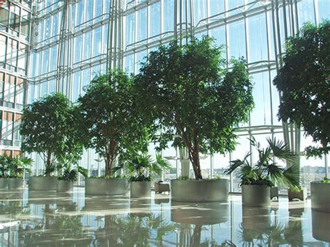 Artificial Plant Decoration Home What Plants Contribute To Interior Design Timber Press