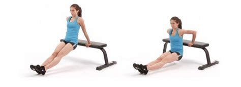 dips on bench 10 dips exercises