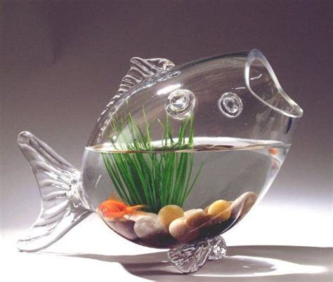 Glass Fish Shaped Bowl Centerpieces Fish Shaped Glass Fish Bowl Aquarium Air Plant Centerpiece