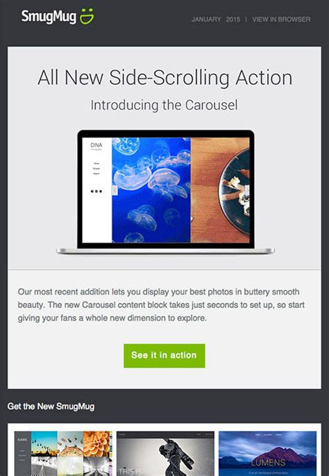 smugmug templates smugmug caign monitor