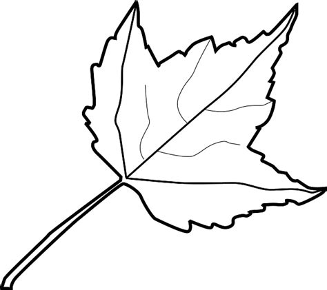 Leaf White fall leaves clipart black and white clipart panda free