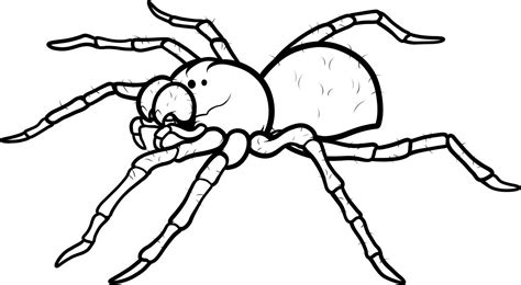 coloring pages printable spider coloring pages coloring me