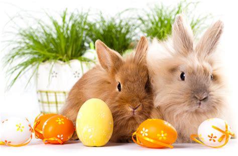 Mit Freundlichen Grüßen Ostern Frohe Ostern Ank 252 Ndigungen Informationen Ytforum De Deine Community
