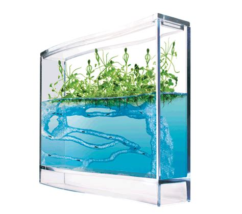 best ant farm ant farms our ant farms are and educational