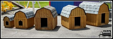 amish built dog houses chicken coops dog houses 187 amish woodwork