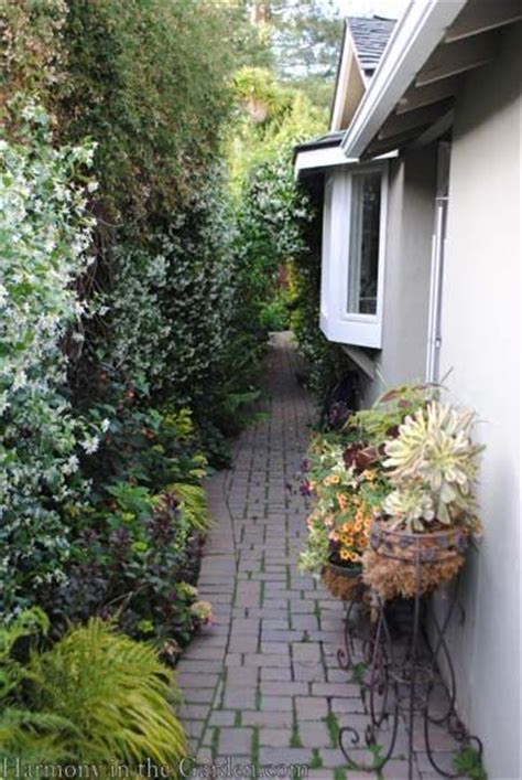 landscaping ideas for narrow side of house transforming a side yard from blah to beautiful curved paving by house narrow